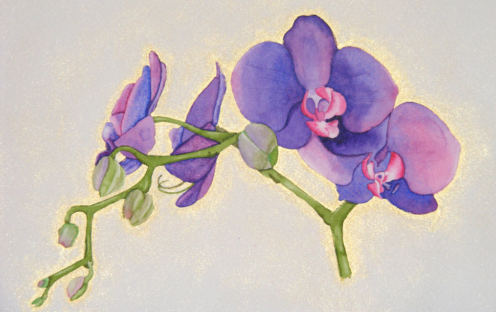 simple orchids paintings - 1014×638
